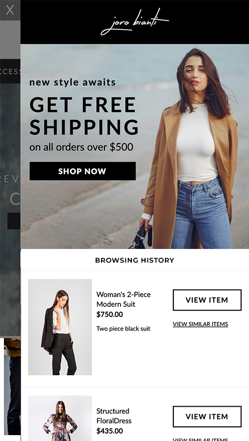 Example of Onsite pop up with free shipping and browsing history product feed
